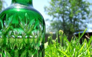 Bioplastics: An Overview