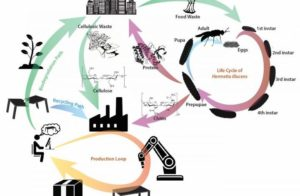 SUTD targets localized circular economy for green 3D printing materials (3DPMN)