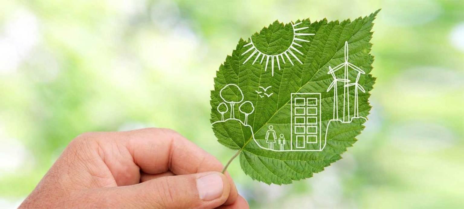 Bioplastics successfully meet all EU safety standards (European Bioplastics)